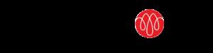 Logo CapitalAV
